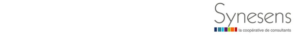 Logo Synesens, la coopérative de consultants